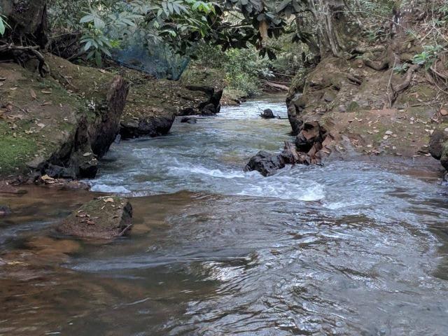 Chacara 6.000 m2 c 30 m beira Rio Cachoeirinha R$70 mil