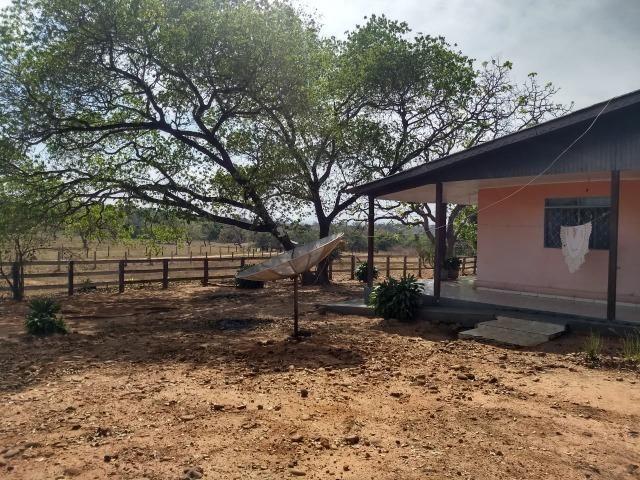 Fazenda Com 1.100 hectares Lago do Manso - Foto 20