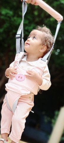 Bebê Walker (Andador)