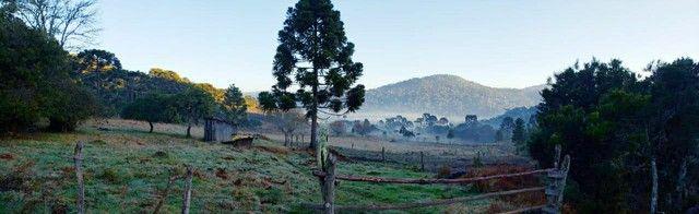 Sitio em Urubici, fazenda em Urubici, serra catarinense. - Foto 14