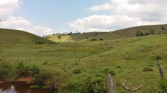 Fazenda 240 has em Tancredo Neves/BA - Foto 8