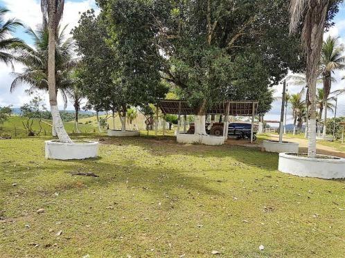 Fazenda 534 has em Tancredo Neves - Foto 7