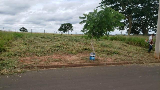 Vendo terreno 178m2 em jales sp - Foto 2