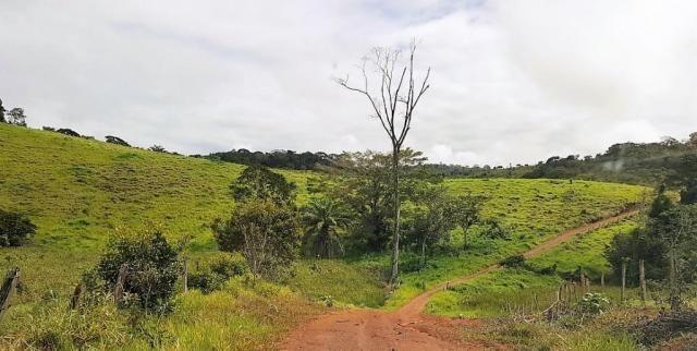 Fazenda 534 has em Tancredo Neves - Foto 4
