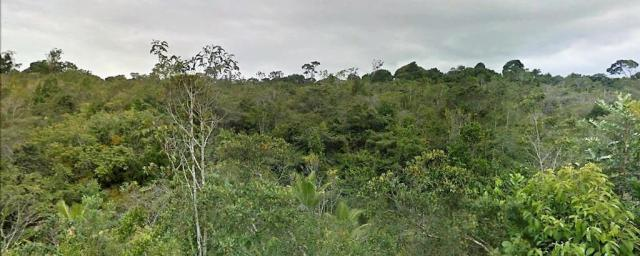 Terreno Arraial Trancoso 66 hectares