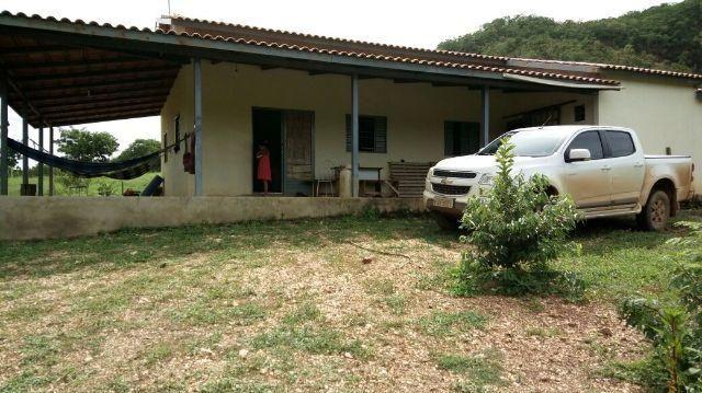 Fazenda Baxão em Porto Alegre-TO ( podemos negociar)