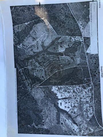 Sítio 23 há ( região capão das antas, sentido jangada) - Foto 5
