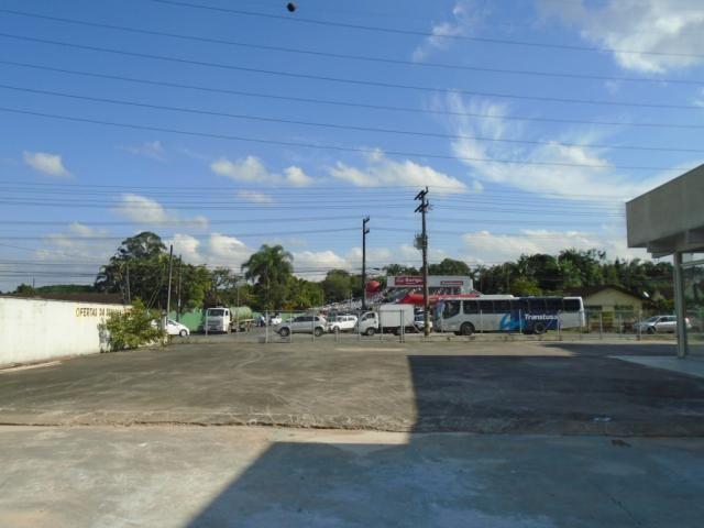 Terreno para alugar em Santo antonio, Joinville cod:08135.002 - Foto 11