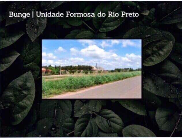 Fazenda na região de Formosa do Rio Preto-BA - Foto 10