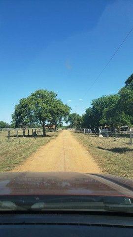VENDA   Fazenda, em ZONA RURAL, ALTO BOA VISTA - Foto 2