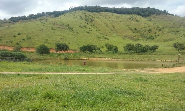 250 hectares terra pronta - Foto 7