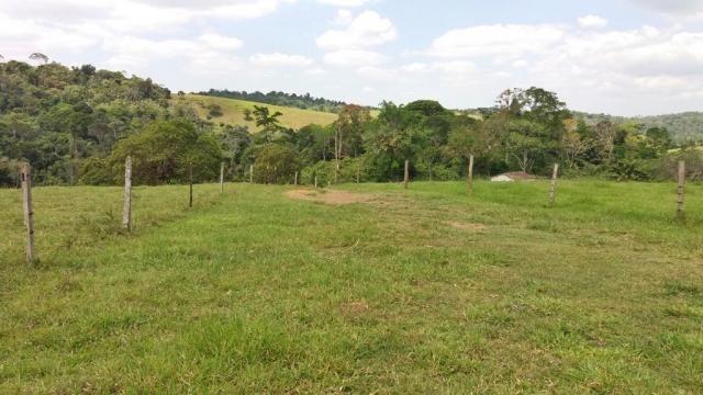 Fazenda 240 has em Tancredo Neves/BA - Foto 20