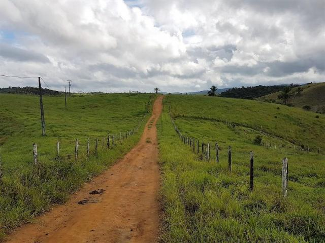 Fazenda 534 has em Tancredo Neves - Foto 16