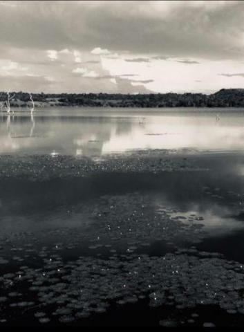 Chácara lago do manso com 3 dormitórios à venda, 150000 m² por r$ 400.000 - zona rural - c - Foto 3
