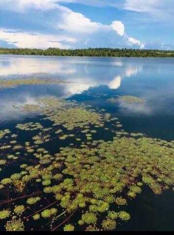 Chácara lago do manso com 3 dormitórios à venda, 150000 m² por r$ 400.000 - zona rural - c - Foto 4