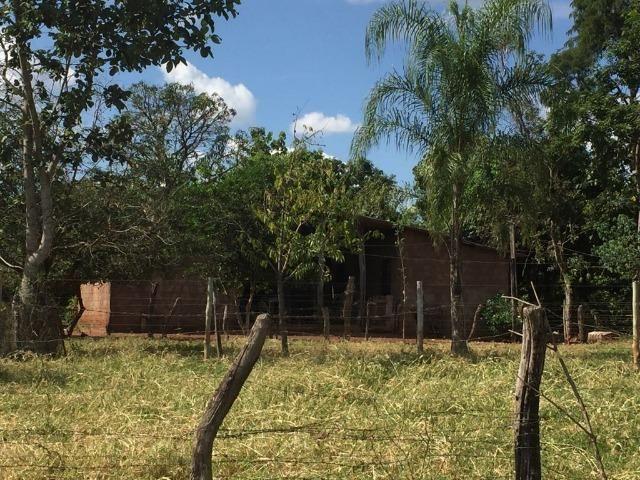 Linda fazenda com casa Sede - Foto 15