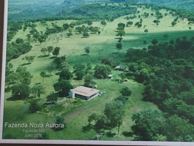 Linda fazenda com casa Sede
