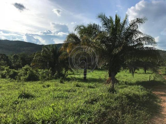 Chácara 26 hec serra são vicente de R$ 250 Mil por R$199.900,00 - Foto 4