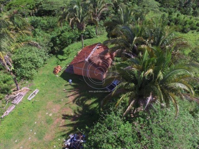 Chácara 26 hec serra são vicente de R$ 250 Mil por R$199.900,00 - Foto 6