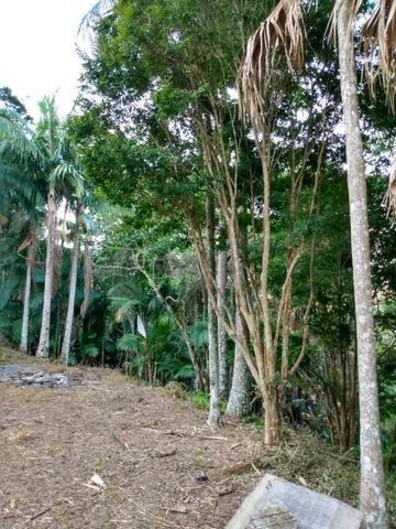 Terreno com 8 alqueires=19 hectares - Foto 18