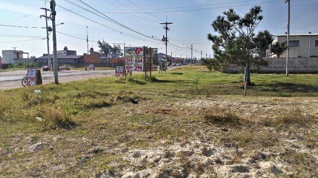 Terreno na praia Oásis Sul - Comercial/residencial (Barbada)