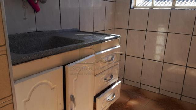 Apartamento para alugar com 1 dormitórios em Centro, Pocos de caldas cod:L6164 - Foto 4