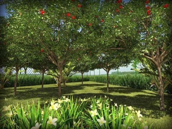 Residencial Jardim Di Hamelin - Apartamento de 2 quartos em Jaraguá do Sul, SC - ID3760 - Foto 8