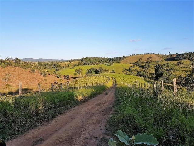 Fazenda 534 has em Tancredo Neves - Foto 19