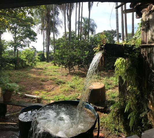 Fazenda 37,3 Alqueires ( 180,85 ha )- Nova Fátima-GO\Hidrolândia-GO - Foto 8