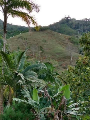 Terreno com 8 alqueires=19 hectares - Foto 10