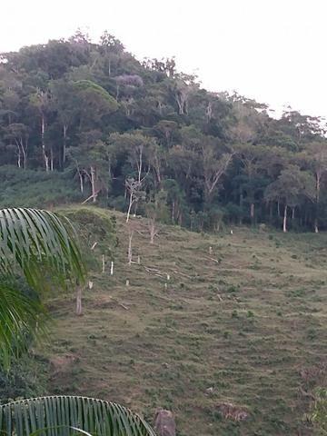 Terreno com 8 alqueires=19 hectares - Foto 5