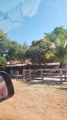VENDA   Fazenda, em ZONA RURAL, ALTO BOA VISTA - Foto 4