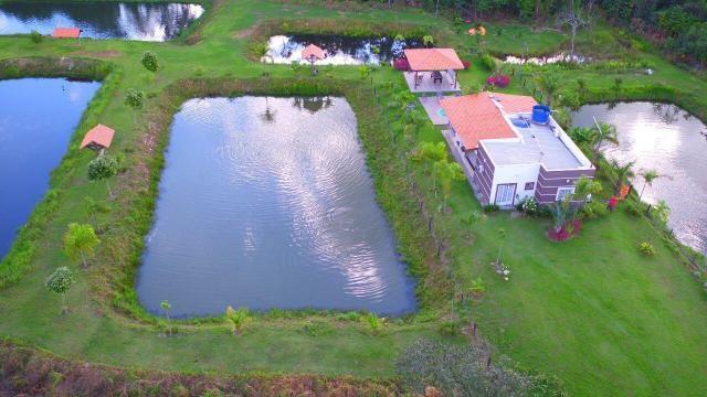 Chácara à venda, 70000 m² por r$ 690.000,00 - zuna rural - coxipó do ouro (cuiabá) - distr - Foto 5