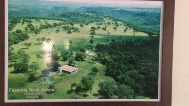 Linda fazenda com casa Sede - Foto 4