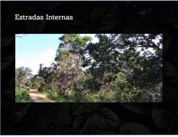 Fazenda na região de Formosa do Rio Preto-BA - Foto 3