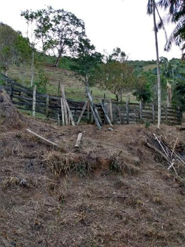 Terreno com 8 alqueires=19 hectares - Foto 7