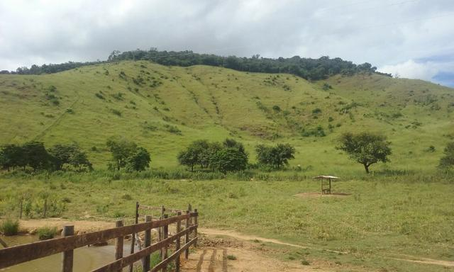 250 hectares terra pronta - Foto 11