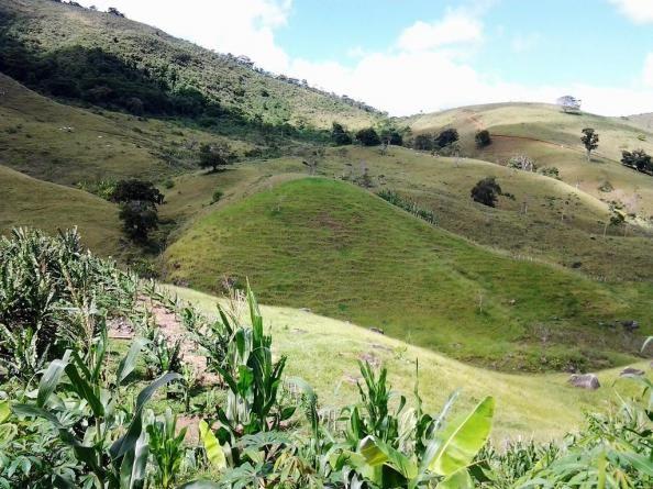 Fazenda em Iguai/BA com 1136 hectares - Foto 8