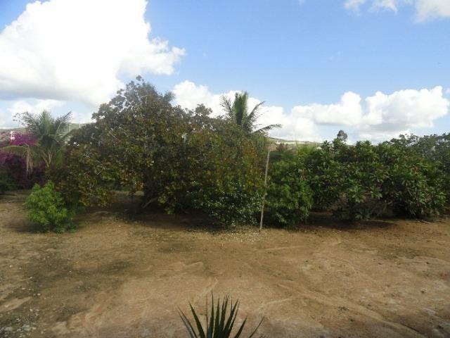 Chácara em Gravatá-PE com terreno de 2.000 m² - Ref. 274 - Foto 19