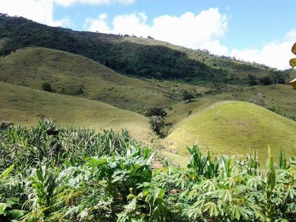 Fazenda em Iguai/BA com 1136 hectares - Foto 6