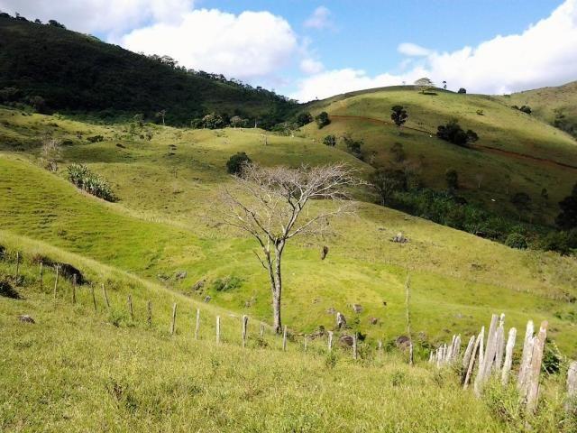 Fazenda em Iguai/BA com 1136 hectares - Foto 17