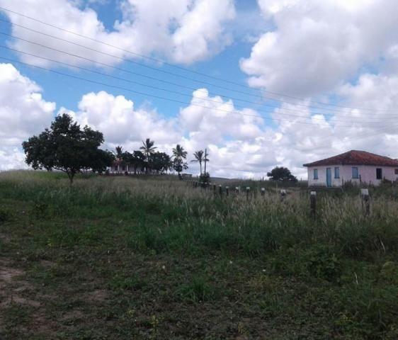 Fazenda Potiraguá/BA 678 hectares - Foto 2