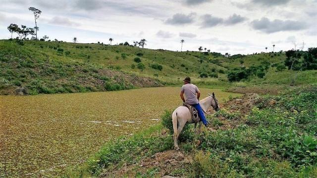 Fazenda Potiraguá/BA 678 hectares - Foto 3