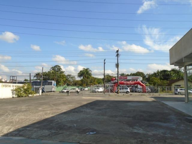 Terreno para alugar em Santo antonio, Joinville cod:08135.002 - Foto 9