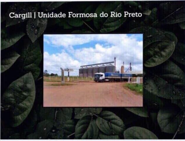 Fazenda na região de Formosa do Rio Preto-BA - Foto 5