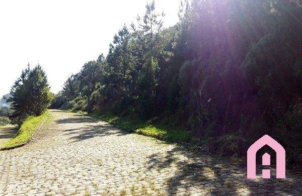 Terreno à venda em São luiz, Caxias do sul cod:2431