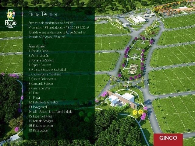 Florais Itália Ginco - Foto 6
