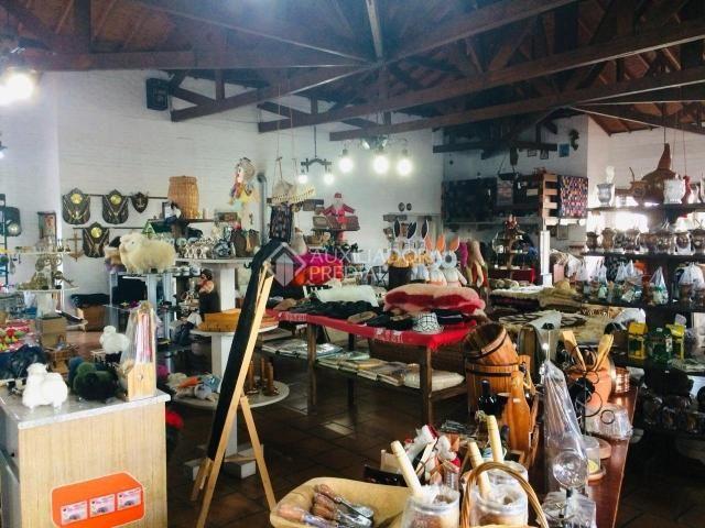 Loja comercial para alugar em Bela vista, Gramado cod:257863 - Foto 8