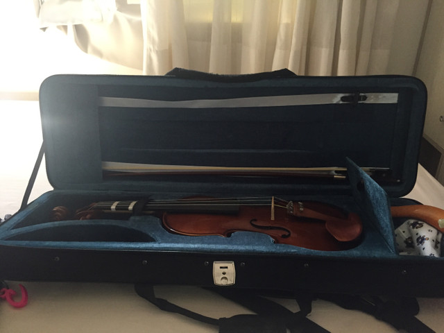 Lindo violino