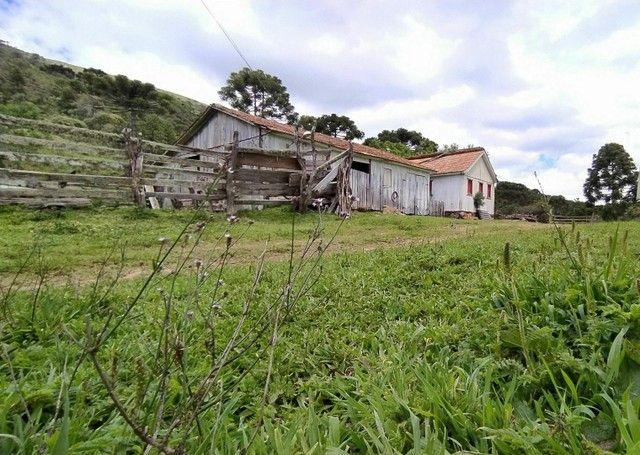 Sitio em Urubici, fazenda em Urubici, serra catarinense. - Foto 7